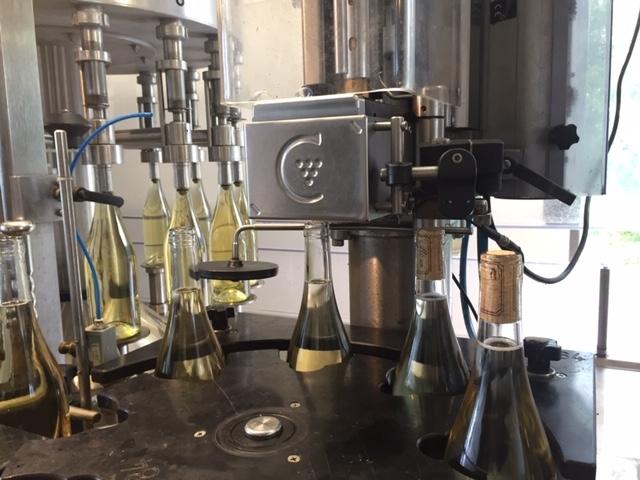2019 wines bottling